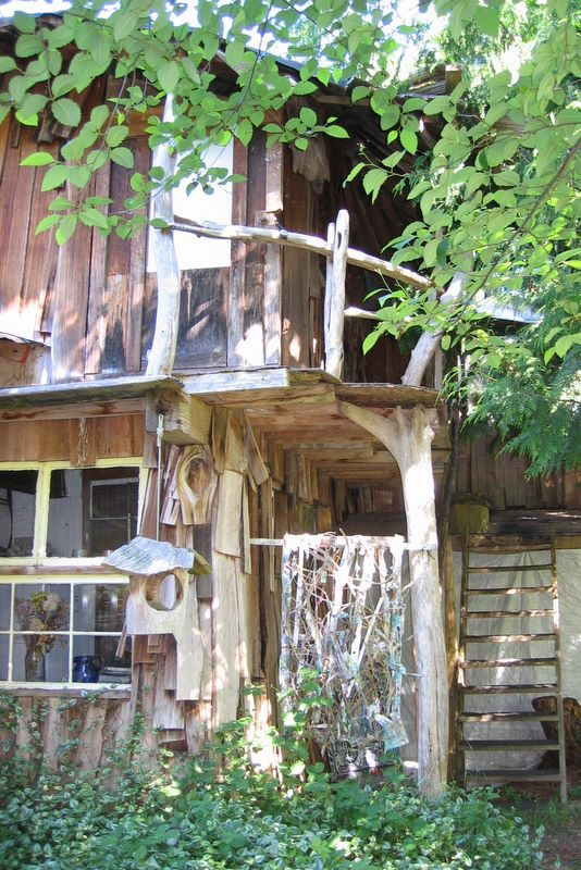 Entrance to the indoor tree house studio